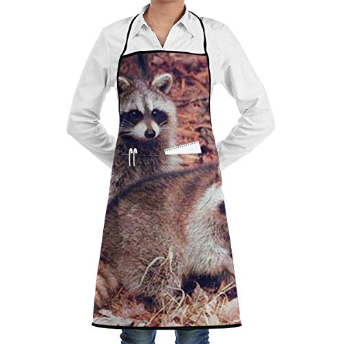 Drempad Schürzen Pair of Racoon Wildlife Baby Animal Apron Kitchen Cooking Commercial Restaurant Apron for Women and Men-Perfect for Gifts