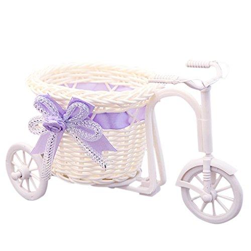 Kineca Diseño de la Bicicleta Canasta de Flores Maceta Florero Decoración para el hogar...
