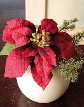 Stella di natale artificiale wanda in vaso di ceramica, rosso, 14 cm, Ø 20 cm - stella di natale decorativa / decorazione natalizia - artplants