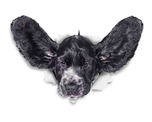 Winston & Bear Perro 3D pegatinas - Pack 2 - Funny Cocker Spaniel vuelo orejas para pared, pegatinas de Cocker Spaniel de nevera