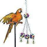 QINYL Papageien Grüne Farbe Kunststoff-Glocke Biss Kugel, Vogel Spielzeug Liefert