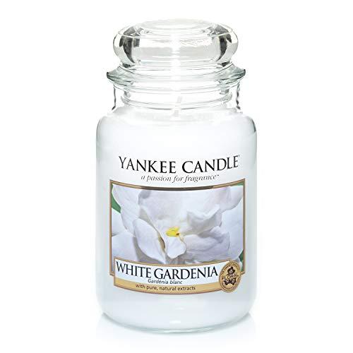 Yankee Candle Weiße Gardenie, Kerze, Glas, 10,7 x 10,7 cm -