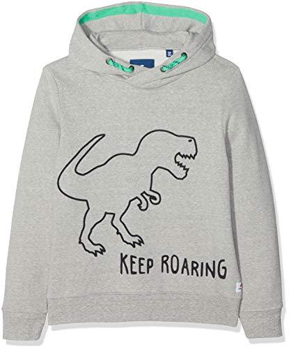 TOM TAILOR Kids Jungen Sweatshirt Placed Print, Grau (Drizzle Melange|Gray 8438) 128