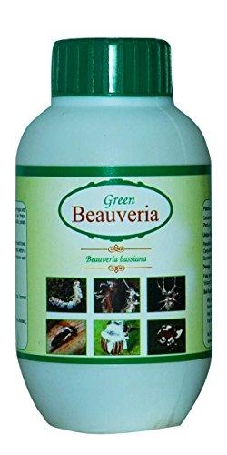 Green Beauveria Liquid Bio Pesticide - Bio Insecticide - Beauveria Bassiana - Quantity : 250ml