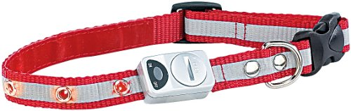 infactory Sicherheitshalsband mit 6 LEDs & Reflektor, für kleine Hunde