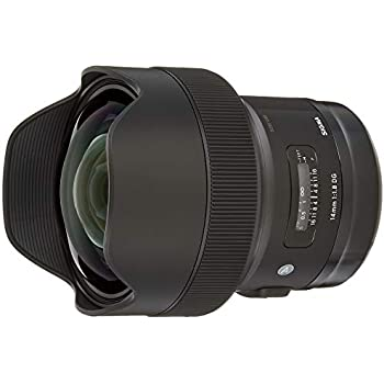 Sigma 540956 - Objetivo réflex 14 mm F1.8 DG AF HSM Art para Sigma ...
