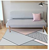 WDSZY Tapis Moderne Nordique Geometrique Simple Gris Rose Salon Table Basse Chambre Enfants Chambre Tapis 120Cmx170Cm