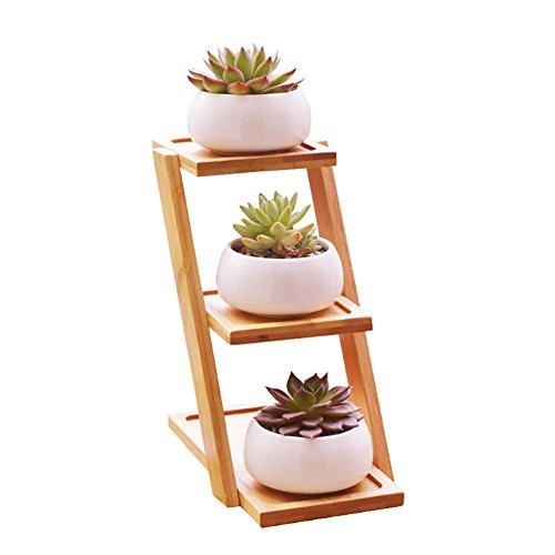 Blumentopf-Halter-keramischer moderner dekorativer abgeplatteter Blumen-Topf u. Dreischichtiger Bambusregal-Topf-Satz ohne Anlage Einfache kreative weiße saftige Anlage