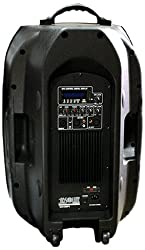 Absolute USA US15BT 2-Way 15-Inch Portable Speaker