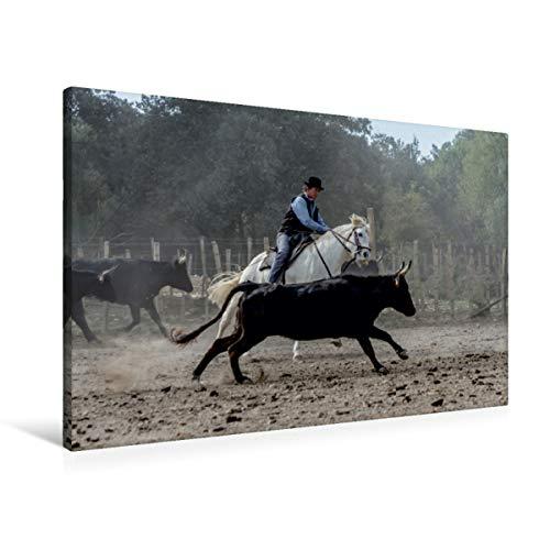 Calvendo Premium Textil-Leinwand 90 cm x 60 cm Quer Aussortieren der Stiere   Wandbild, Bild auf...