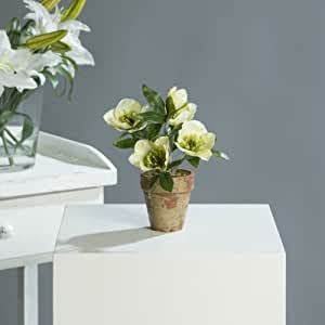 helleborus nieswurz schneerose christrose kunstpflanze im topf 22 cm creme. Black Bedroom Furniture Sets. Home Design Ideas