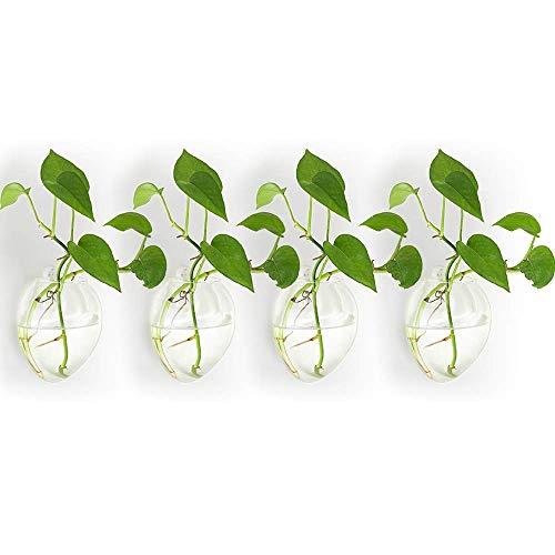 Nuptio 4 Stücke Wandbehang Glas Pflanzgefäße Blumentopf - Wasser Pflanzen Vasen Luft Blumenvase Pflanze Terrarien Pflanzenbehälter