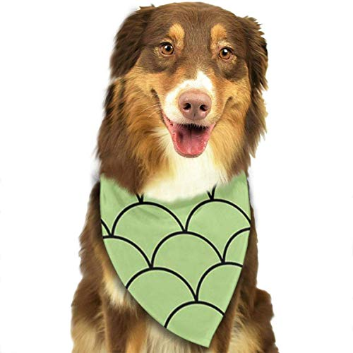 rcles Pet Bandana Washable Reversible Triangle Bibs Scarf - Kerchief for Small/Medium/Large Dogs & Cats ()