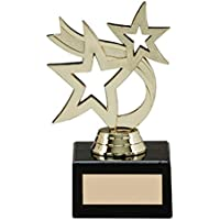 A1 PERSONALISED GIFTS Hunter Gold Star Achievement Trophies