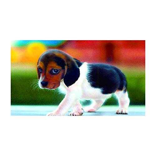 HVdsyf DIY Diamant Malerei Kits, Niedlichen Kleinen Hund Katze Küken Volle Runde Bohrer Strass Stickerei Malerei Handwerk Für Wand-dekor (30x40 cm) E647 -