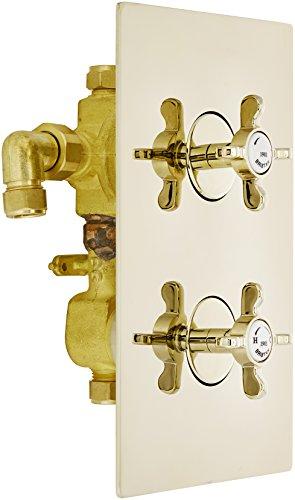 Bristan N2 SHCVO G 1901 - Válvula de ducha termostática empotrable, color...
