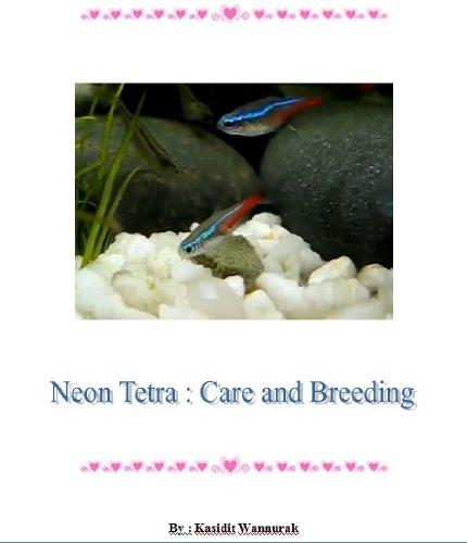 Neon Tetra : Care and Breeding (English Edition) (Tetra Neon Fisch)