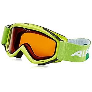 Alpina Erwachsene Skibrille Firebird