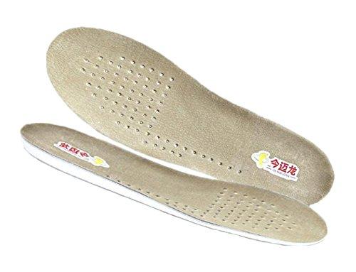 Ascenseurs à chaussures respirants 1 cm /0,4 pouces Semelles de chaussures