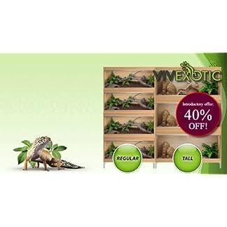 Vivexotic Repti-Home Vivarium Large – Oak 41UyGp4jPzL