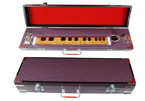 SG Musical INDIAN BANJO MUSICALS INSTRUMENTS