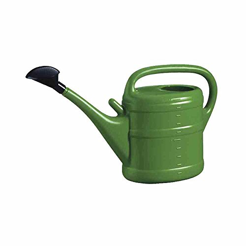 10 litre Big Watering Can in green