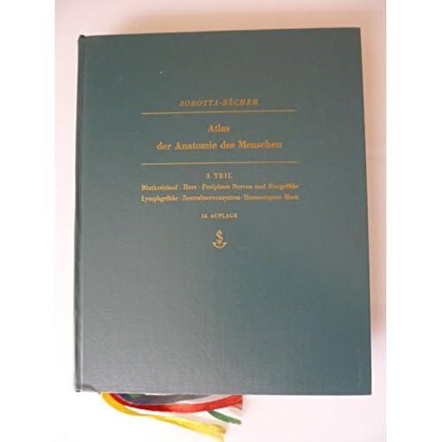 PDF] Atlas der Anatomie des Menschen. T. 3. Blutkreislauf - Herz ...
