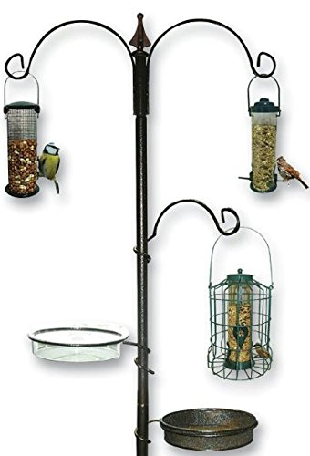 wild-bird-feeding-station