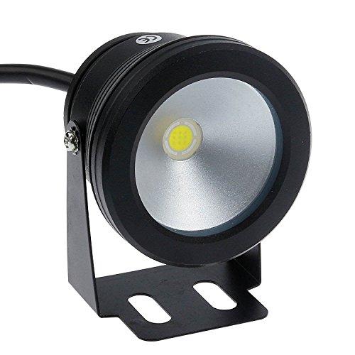 LEMONBEST® 10W 12V IP65wasserdicht LED Flutlicht für Landschaft Brunnen Teich Pool Tank, schwarz, Cool Weiß