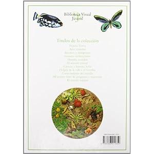 El Mundo Natural (Biblioteca Visual Juvenil)