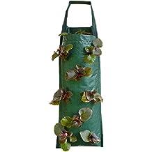Nutley's  - Bolsa para colgar las fresas de color verde oscuro