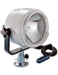 Projecteur avec Naiim® prise 12V 100W