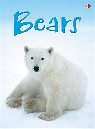 Bears (Beginners) (Beginners Series)