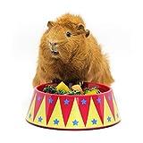 HAYPIGSMeerschweinchen Zubehoer und Spielzeug - FOOD CRAVING TAMER Meerschweinchen Napf im Zirkus-Look -Meerschweinchen Futternapf-Futtertrog für Igel-Kaninchen Napf- Schüssel für Kleintiere