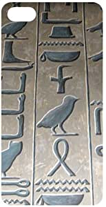 Egyptian Hieroglyph Pink Flip Case for Apple iPhone 5C