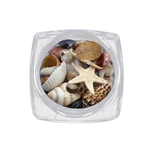 Lurrose 1 Box Ozean Stil Dekorationen Natürliche DIY Mini Conch Muscheln Sea Beach Ornamente 3D Nagel Edelsteine ??Zubehör Maniküre Nail Art Dekoration