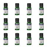 Anjou Ätherisches Öl Lavendel, 100% Reines Aromatherapie Ätherisches Öl für Diffuser, Luftbefeuchter, Massage, Spa, Haut & Haar Pflege, 10 ml