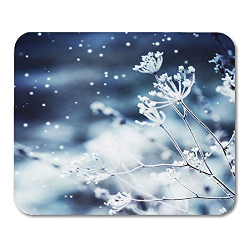 Cow Winter Landscape Scene Frozenned Flower Freeze Frosty ICY Russia Snow 11.8
