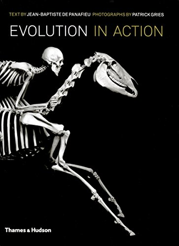 Evolution in Action: Natural History through Spectacular Skeletons by Jean-Baptiste de Panafieu (26-Sep-2011) Hardcover