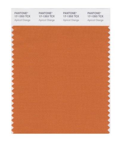Pantone Smart Farbe Swatch Karte Apricot Orange