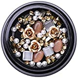 LishMark Swarovski 3D Rhinestones Set Diverse DIY Gems New Charming Mix Nail Art Decoration Rose Jewelry Gel Glitter Nail Art Decoration (Style #02)