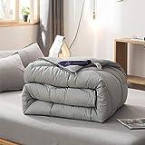 FF&XX 4-Jahreszeiten Nach Unten Gesteppte Bettdecke,dick Warme Winter Bettdecke Box Nach Unten Genäht Decke Twin Reversible Bettdecke Lightweight Bettdecke-grau 150x215cm(59x85inch)