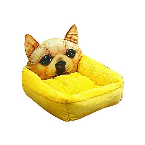 DOXMAL Katzenbett Hundebett Mittelgroße Hunde,Katzenkorb Hundebetten für Kleine Hunde Bett Dog Bed Katzenkorb Zum Schlafen Sprouting (Gelb S)