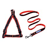 XDYFF Hundeleine Trainingsleine für Sicherheit Nachts Brustgurte für Zuggeschirr mit explosionssicherem Oxford-Stoff,Red,M