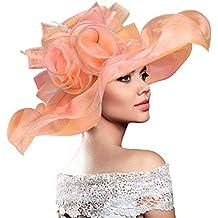 Dafunna Sombrero De Sol Kentucky Derby Organza De Flores Plegable De ala  Ancha Mujer para Iglesia 9c70b28d3cdf