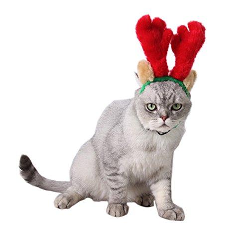 Hund Elchgeweih Rentier Haarreifen mit Ohren Hunde Katze Weihnachtsmütze Nikolausmütze Rot (Ohren Kostüm Katze Rote)