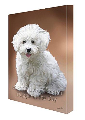 Bichon Frise Hund Gemälde auf Leinwand gedruckt art Wand, canvas, mehrfarbig, 11x14 -
