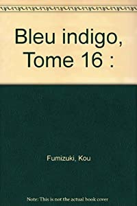 Bleu indigo - Ai Yori Aoshi Edition simple Tome 16