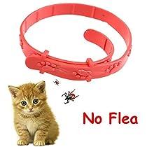 CAT FLEA COLLAR AJUSTIBLE x6 CAT WALK Leeway Beaphar