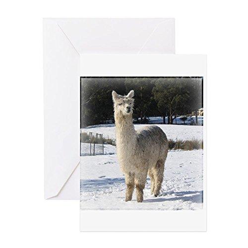 CafePress–Alpaka im Schnee–Grußkarte, Note Karte, Geburtstagskarte, innen blanko, matt (Farm Tier Stofftiere)